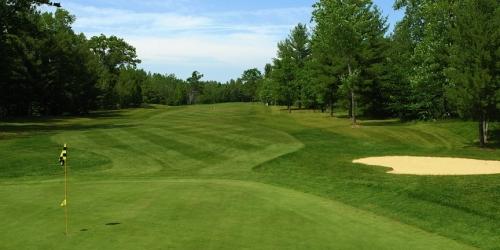 Discount golf coupons michigan
