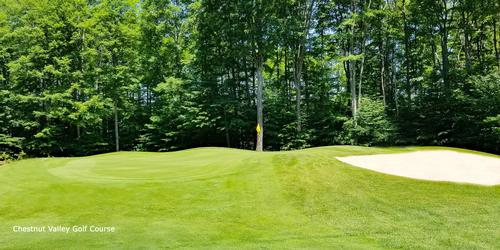 Chestnut Valley Golf Course Review