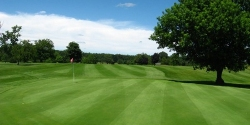 Mulberry Hills Golf Club